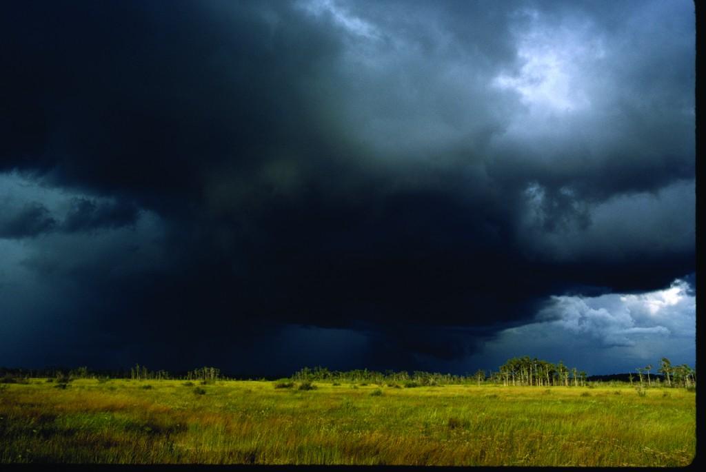 Storm Over Hammock