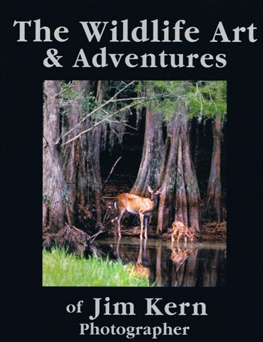 Wildlife Art Cover